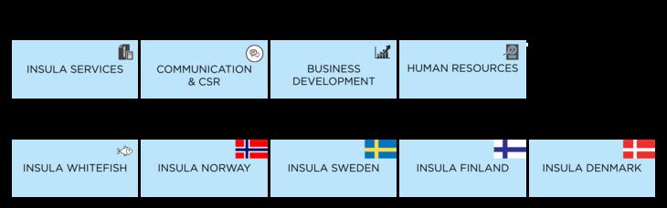 Figur: Insulas koncern- og forretningsområder