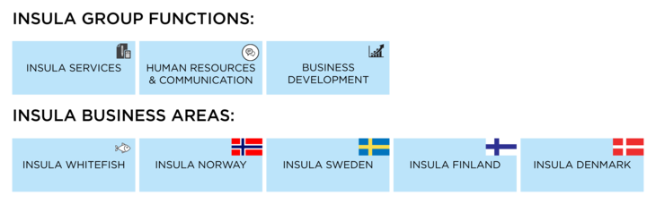 Insula_Group_Business